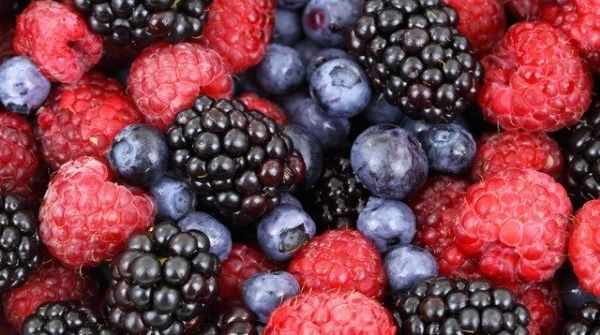 Intake of berries regularly will improve insulin sensitivity and it is best home remedies for diabetes.