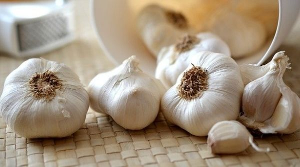 Food to lower blood sugar levels is the intake of garlic regularly. It has antioxidants, anti-cancer properties, etc.