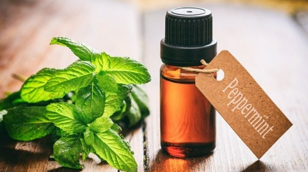 Peppermint oil is great to calm your mind. Also, it will help you to relax your body.