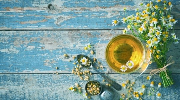 Sleep Deprived meaning poor sleep hygiene but it can be solved by chamomile tea.