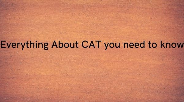 Here is everything that you need to know about CAT Coaching in Chennai.