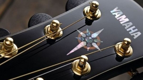 The guitar should have its brand name and logo on it.