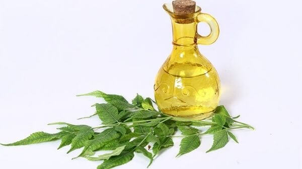 a flask of neem massage oil with some neem leaves near it.